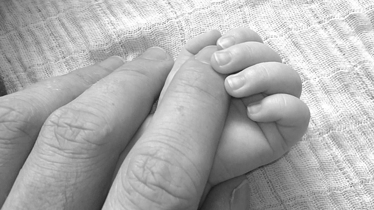 Attachment Theory Mother And Baby
